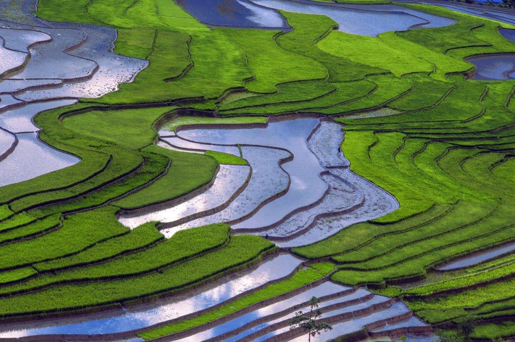Vẻ đẹp Tú Lệ- Mù Căng Chải mùa nước đổ | OTOFUN | CỘNG ĐỒNG OTO XE ...