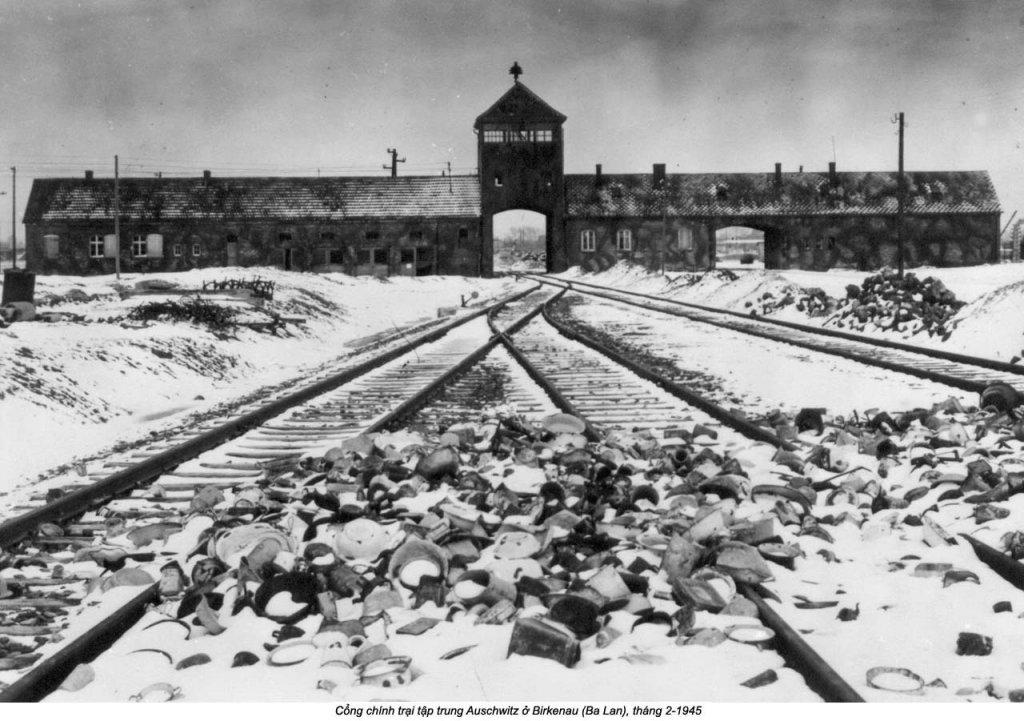 Auschwitz (7).jpg