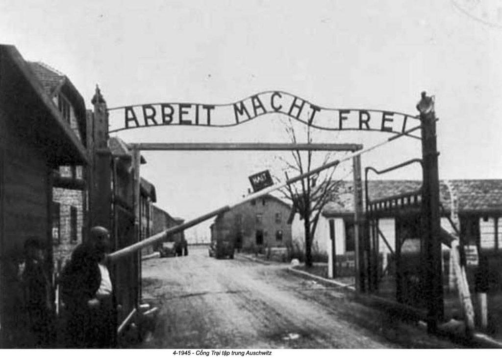 Auschwitz (17).jpg
