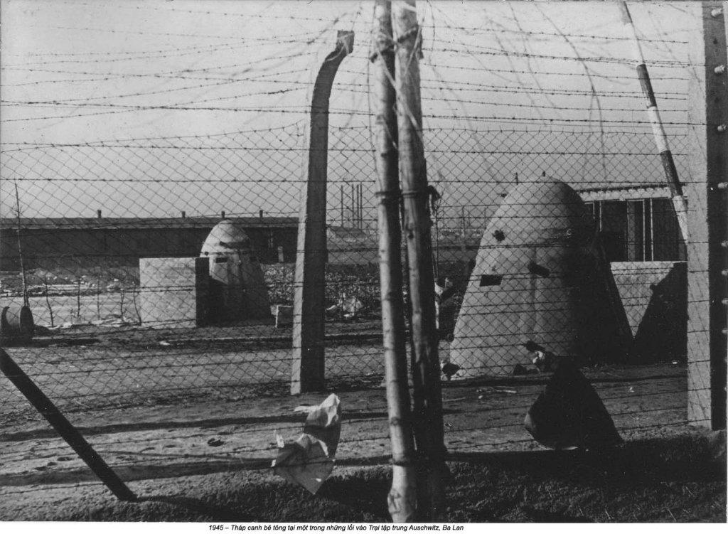 Auschwitz (36).jpg