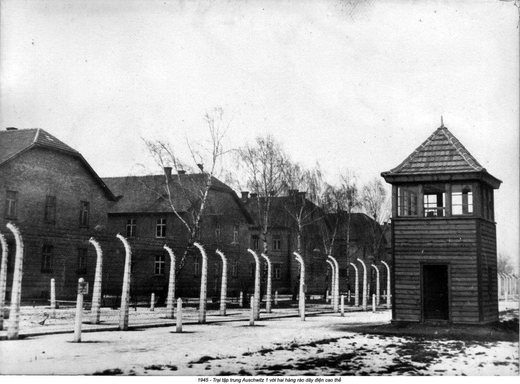 Auschwitz (38).jpg