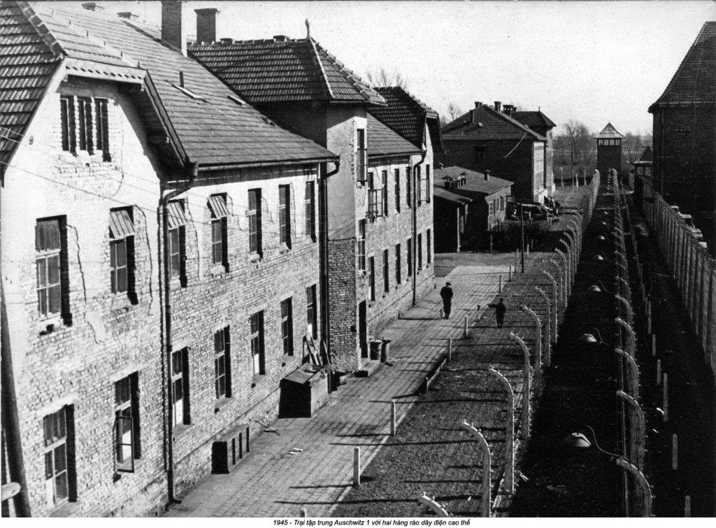 Auschwitz (39).jpg