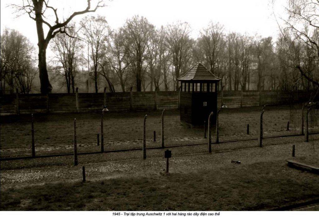 Auschwitz (40).jpg