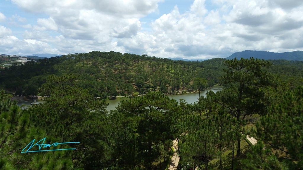 TVH's pic - Thung lung tinh yeu, Da Lat - 030716 (1).jpg