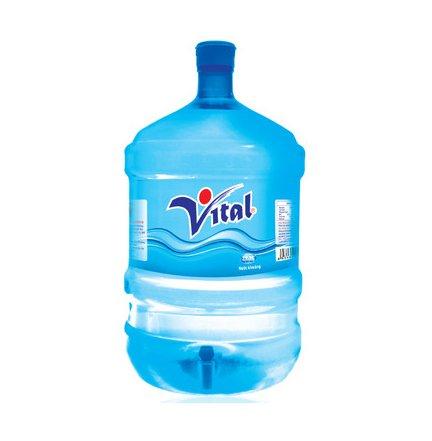 vital 19 lit.jpg