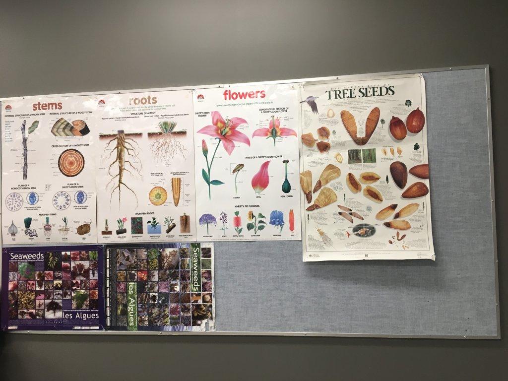 phòng thí nghiệm sinh học 2.jpg
