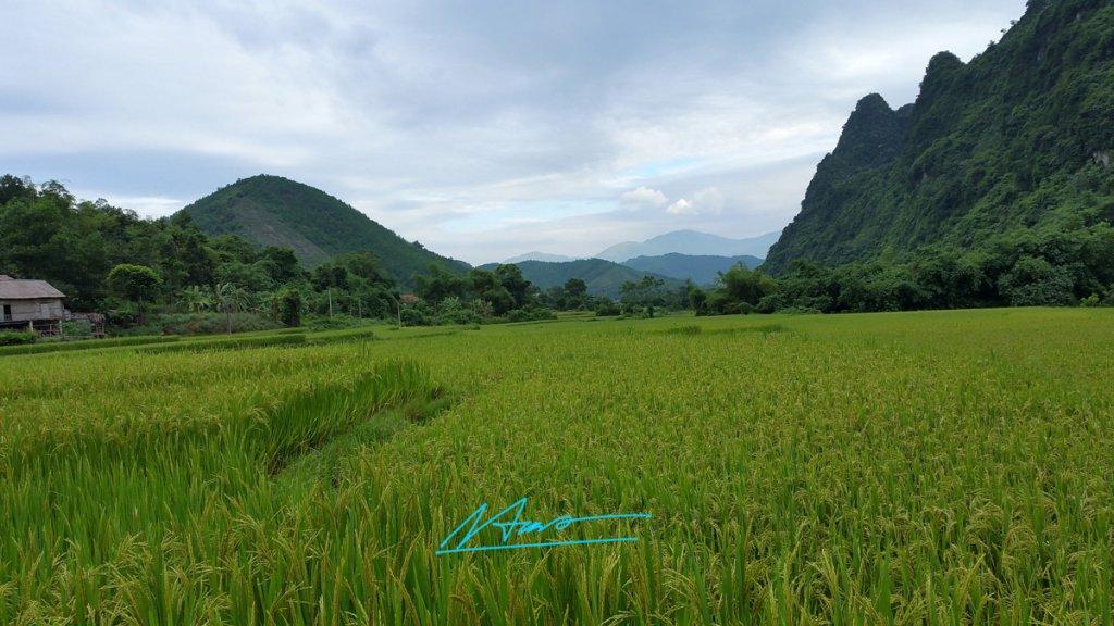TVH's pic -  Hoa Binh [duong di Luong Son - Kim Boi] - 130915 (22).jpg