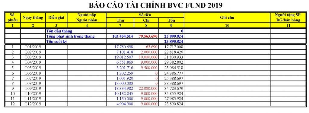 BVC Fund 2019 - Lite.jpg