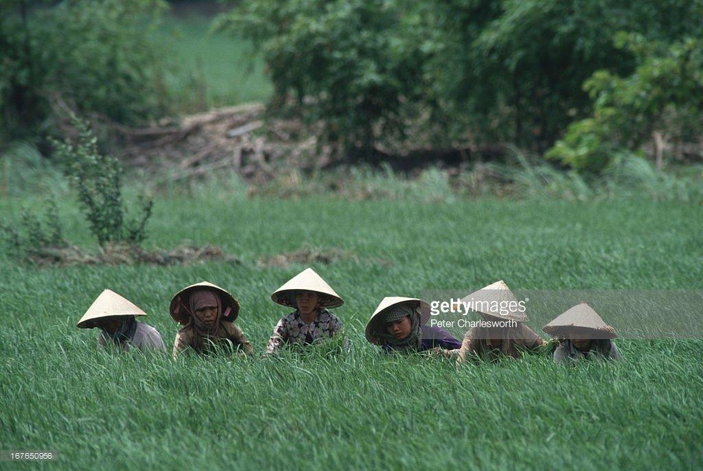 Vietnam-1990s-Peter-Charlesworth-15.jpg