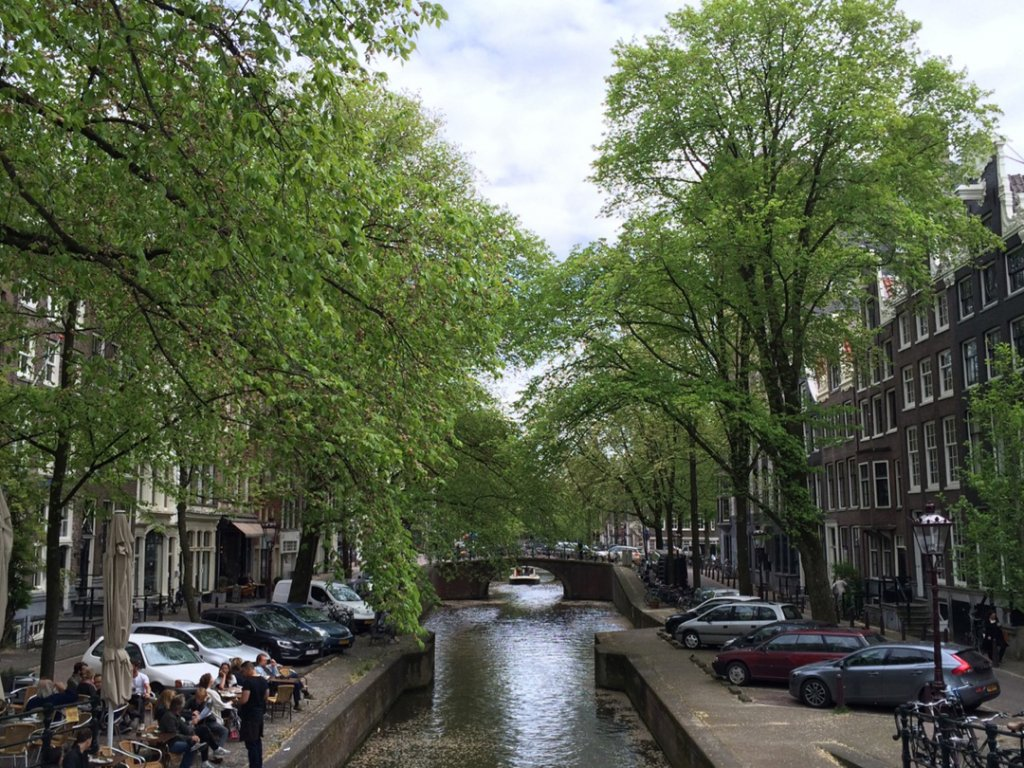 Springsnow-in-Amsterdam-2015_Photo-by-Conscious-Travel-Guide-Amsterdam.jpg